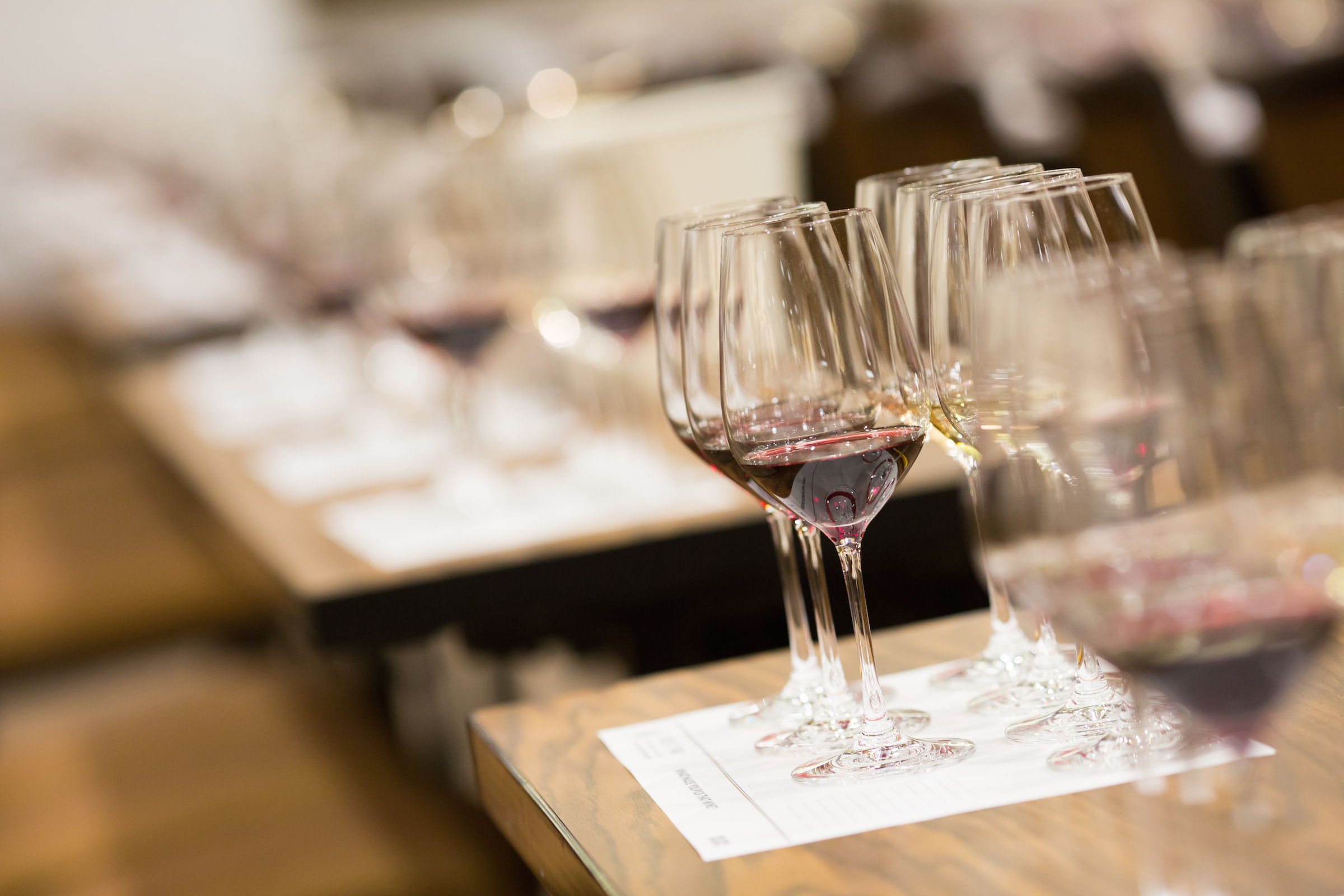 Wine Tasting and Seminars