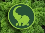 Green Elephant Juicery